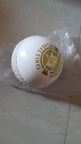 SHRINATH SPORTS Sports Center Cricket Synthetic Balls Price & Reviews