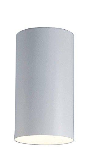 Volume Lighting V1015-6 Single Cylinder Ceiling Mount Spot Light ()