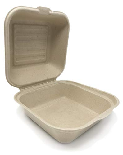 100% COMPOSTABLE 6 x 6 Take Out Food Container