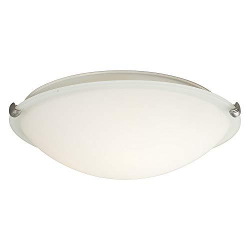 (Forte Lighting 2799-03-55 3 Light 16