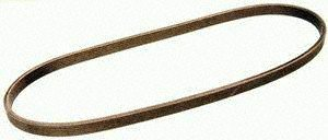 Gates DK060725 Multi V-Groove Belt