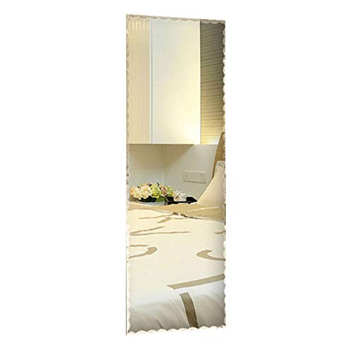 Decoraport 18 in x 57 in Wall-Mounted Full Length Wall Mirror Dressing Mirror (A-D002)