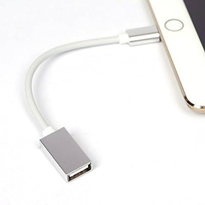Collegare il mouse per iPhone