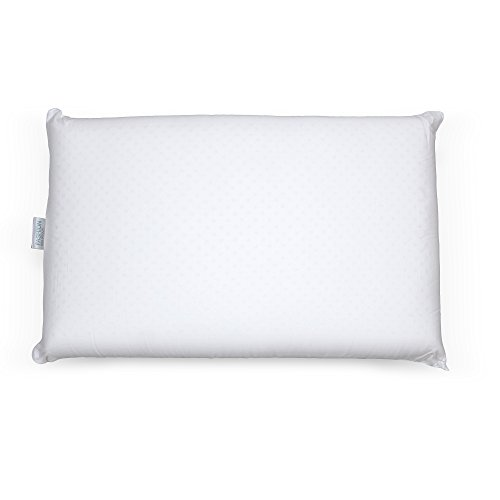 Fashion Bed Group Sleep Plush Latex Foam Pillow, Standard / (Standard Solid Foam)