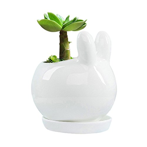 Cute Animal Shaped Cartoon Home Decoration Succulent Vase Flower Pots,Rabbit by Zadaling