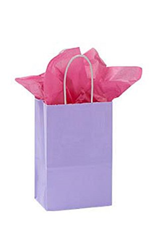 Small Glossy Lavender Paper Shopping Bags - Pack of 100 by STORE001