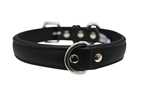 Leather Dog Collar, Padded, Double Ply, 22