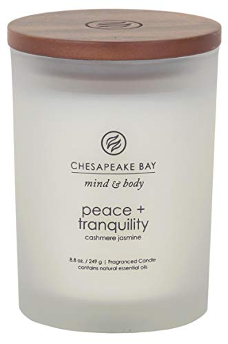 Chesapeake Bay Candle Mind & Body Medium Scented Candle, Peace + Tranquility (Cashmere Jasmine)