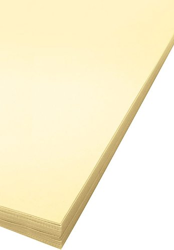 Bee Paper Oak Tag Board Pack, 18-Inch by 24-Inch, 100 Sheets per Pack by Bee Paper Company