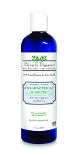 SynergyLabs Richard's Organics Anti-Bacterial Shampoo, 12oz, My Pet Supplies