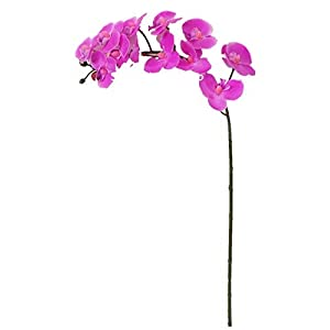 Sweet Home Deco 23'' Mini Latex Real Touch Phanaenopsis Orchid Spray (12 Flower Heads) (Fuchsia) 60