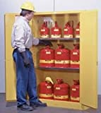 Sure-Grip EX Flammables Cabinet with Manual Doors (30-gal)