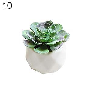 XKSIKjian's Artificial Plants, 1Pc Artificial Succulent Bonsai DIY Garden Office Decor Flowers, Fakeflowers Bouquet Wedding Party Home Decoration - 10# 9