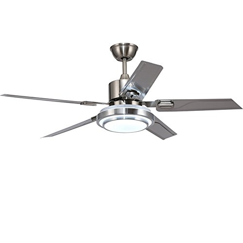 Andersonlight Brushed Steel Indoor Ceiling Fan, Light Kit with White Acrylic Glass and Remote (5-Blade), Dimmable White/Warm / Yellow Light, Quiet Variable Speed Home Improvement 48 inch