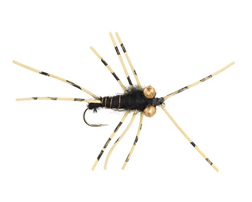 Nymph Rubber Leg (Stonefly 6-Pack Fly Fishing Nymph with Rubber Legs & Bead Eyes - Wet Stone Fly Fishing Flies: 6-pack, 3 in size #12 and 3 in size #14)
