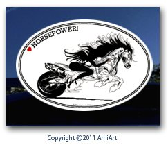 AmiArt Motorcycle Decal-Lady Sportbike Rider-I Love Horse Power! Women Motorcycle Rider I Ride My own Window Sticker Decal for Cars Walls Trucks