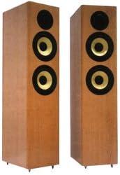 Sony SS-B4ED British floorstanding speakers: Amazon.co.uk: Hi-Fi & Speakers