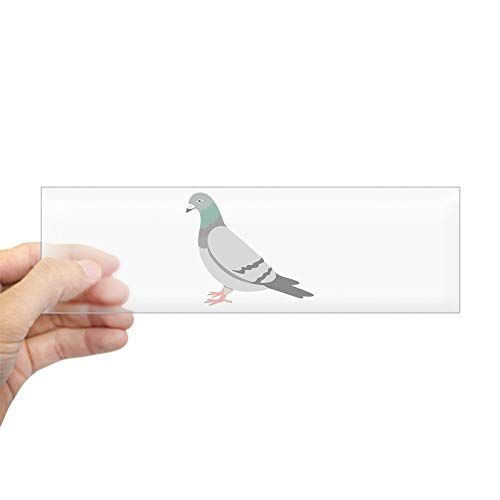"CafePress Pigeon Bumper Sticker 10""x3"" Rectangle Bumper Sticker Car Decal"