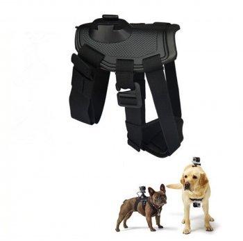 Diseño Amigos Perros Vajilla Vajilla Deportes cámara soporte Cámara Soporte Vajilla para perros para la Gopro Camera Hero 4 3plus 3 2 SJ4000 SJ5000: ...