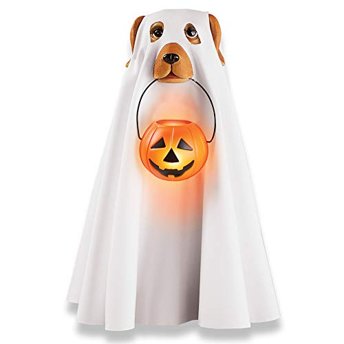 Scary Halloween Costumes From Spirit Halloween - Collections Etc Cute Ghost Dog in