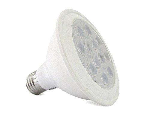 Lampada Per Faretto A Led.Lampada Faretto Led Spot E27 Par30 12w 100w Bianco Caldo