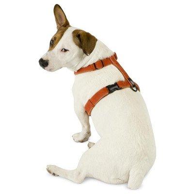 Planet-Dog-Cozy-Hemp-Adjustable-Harness