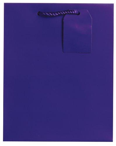 Jillson Roberts Bulk Medium Gift Bags Available in 19 Colors