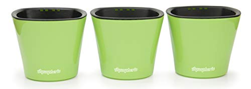 Self Watering Mini 3.5 Planter Pots (3 Pack Green) Grow a Indoor Window Sill Garden. Perfect for Potting Smaller House Plants, Herbs, African Violets, Succulents, Flowers or Start Seedlings.