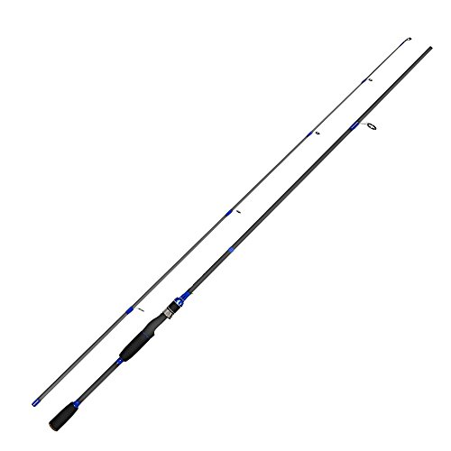 Handing Fishing Rod Two Pieces Spinning Pole,Eva Fore Grip Medium Action Carbon Fiber Rod for Seawater and Freshwater