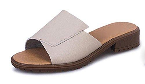 Inicio de primavera y el verano grueso con zapatos de plataforma de tacón bajo arrastran la palabra sandalias de deslizamiento casual y zapatillas las mujeres beige