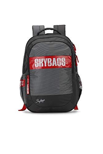 Skybags Figo Plus 06 34 Ltrs Grey Casual Backpack (FIGO Plus 06)