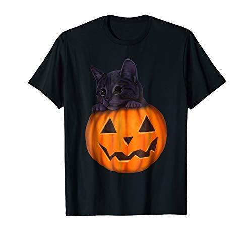 Kitten in a pumpkin - Halloween jack-o-lantern cat -