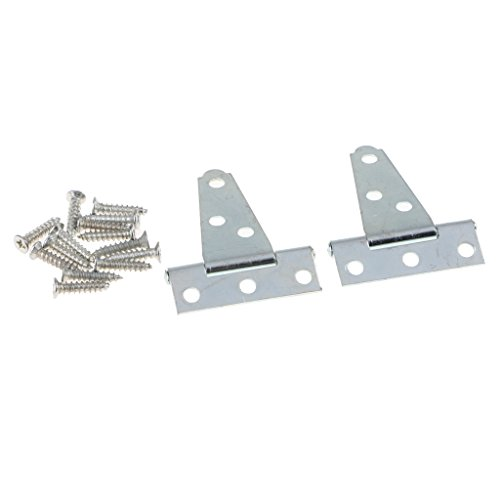 D DOLITY 1 Pair Tee Hinges, Gate Hinge, Shed Door T Hinge, 4inch - 12inch, Black/Silver - Silver 2inch, as described