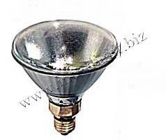 115V Led Light Bulbs - 2