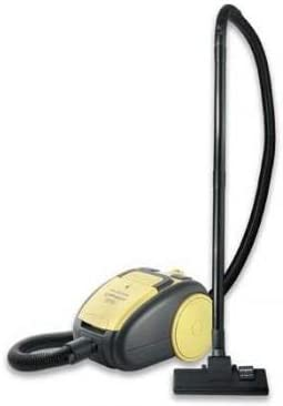 Delonghi XTD 2040 Romeo - Aspirador: Amazon.es: Hogar