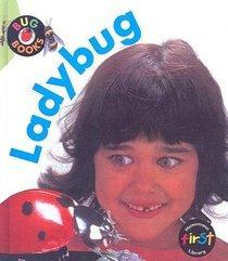Ladybug (Bug Books)