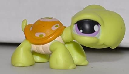 Amazon Com Turtle 350 Green Purple Eyes Brown Shell Yellow Green Marks Littlest Pet Shop Retired Collector Toy Lps Collectible Replacement Single Figure Loose Oop Out Of Package Print Toys