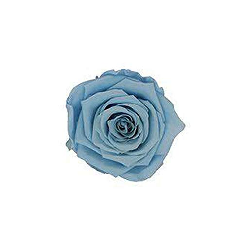 Baby hunter station Artificial Flowers Rose Artificielle 4-5CM Preserved Eternal Roses Box Newyear Valentine's Gifts Forever Everlasting Rose,20 Light Blue