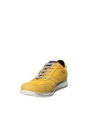 CALLAGHAN 88464 Wendigo Amarillo Uomo giallo