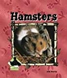 Hamsters (Animal Kingdom)