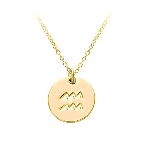 Aquarius Charm Gold Plated - HACOOL 18k Gold Plated 12 Zodiac Sign Tag Constellation Horoscope Astrology Disc Charm Necklace Pendant (Aquarius)