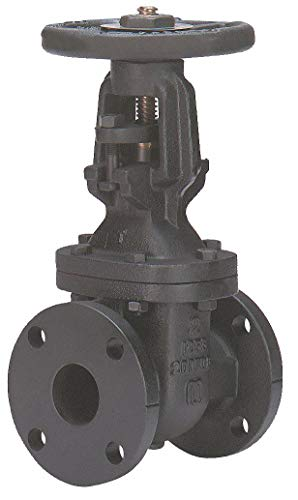 - Class 125 Flange Outside Stem and Yoke Gate Valve, Inlet to Outlet Length: 8