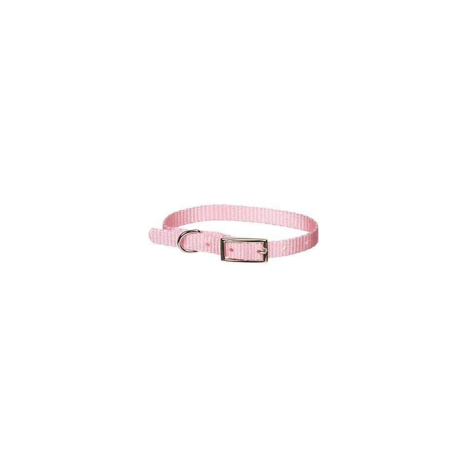 3/8 Single Ply Nylon Dog Collar in Pink
