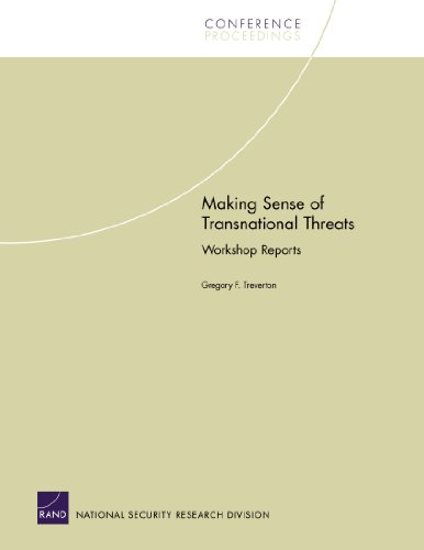Making Sense of Transnational Threats: Workshop Reports