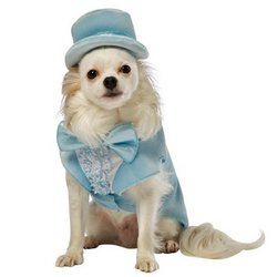 (Rasta Imposta Dumb and Dumber Harry Blue Tuxedo Dog Costume,)