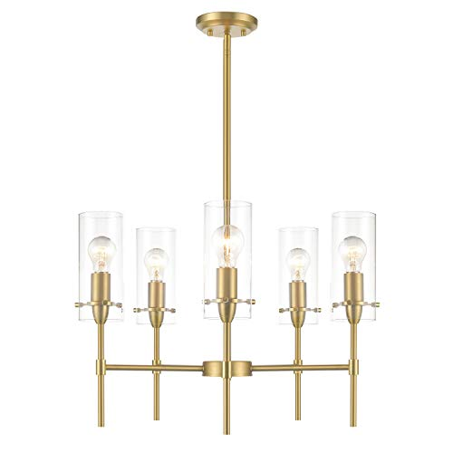 Light Society Montreal Cylindrical 5-Light Chandelier Pendant, Brushed Brass with Clear Glass Shades, Contemporary Modern Lighting Fixture (LS-C239-BB-CL) ()