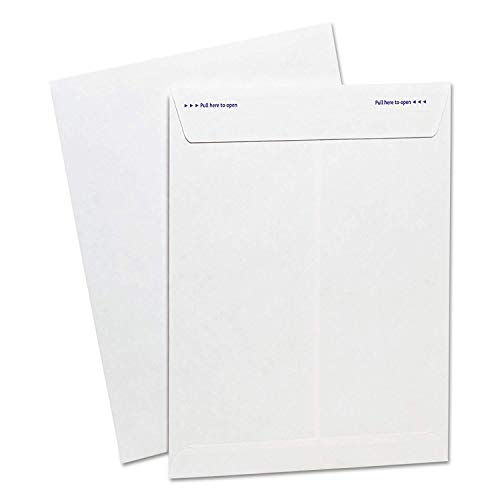 Ampad Fastrip Security Catalog Envelope, 9 Inch x 12 Inch, Peel & Seal Adhesive, Security Tint, Tear-Away Quick-Open Strip, White, 100 Per Box (73127) (Limited Edition)