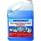 Wet and Forget 10587 1 Gallon Moss, Mold and Mildew Stain Remover