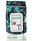Body Prescriptions Tea Tree Facial Wipes, Detoxifying + Moisturizing, Deep Cleansing Face Towelettes, Refreshing + Nourishing, Gentle Makeup Removing Cleansing Cloths (Pack of 60)