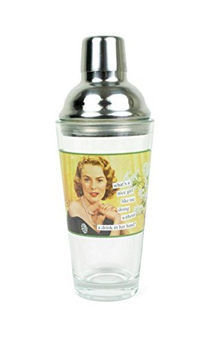 Horse Head Pitcher (Anne Taintor Stainless Steel Cocktail Martini Shaker - A Nice Girl Like Me)